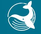 【Air drop】エアドロップトークンBlue Whaleの貰い方を説明します