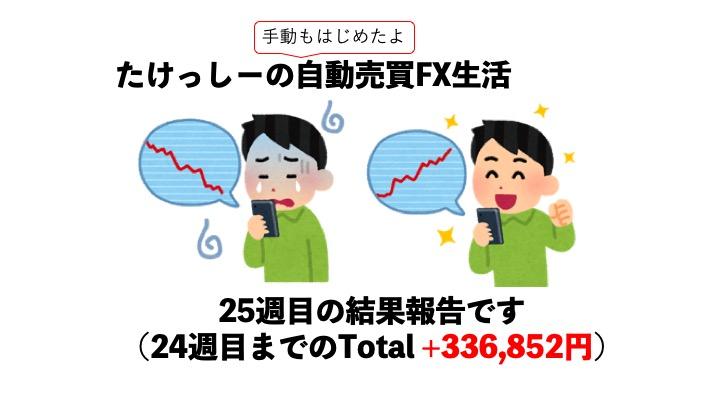 【FX】ツール自動売買FX25週目、実績はいかに?