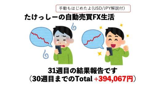 【FX】ツール自動売買FX31週目、実績はいかに?